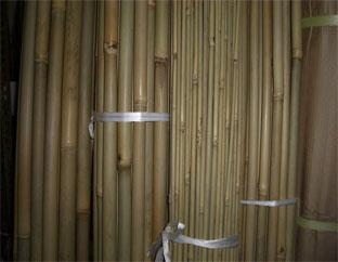 国産 晒し女竹